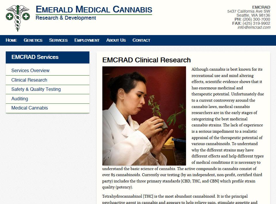 Image of emcrad.com Services Page